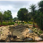 in-the-area-bustan-hazait-mini-botanical-gardens-2