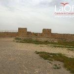 tel-arad-archeology